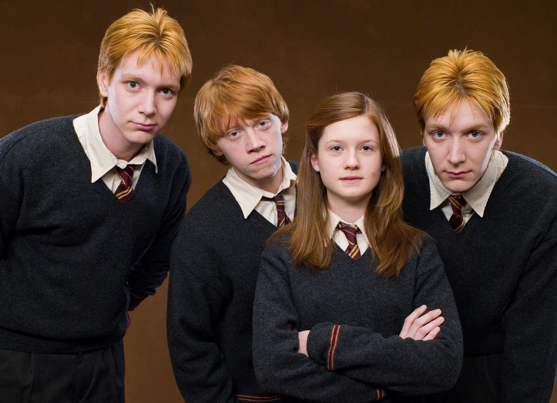 The Hypocrisy of the Weasley Family | The45Girl